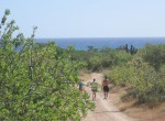 Cabo Pulmo Lot 8-9
