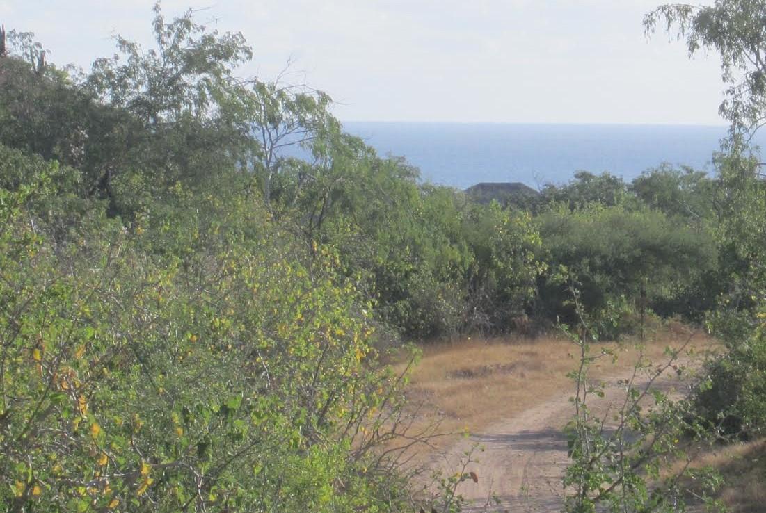 Lots 10-11 Cabo Pulmo Properties